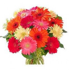 Hand Bouquet of 10 Stalks of Mixed Coloured Gerberas