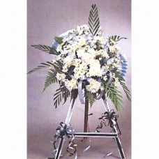 Condolence Floral Stand of Daisies