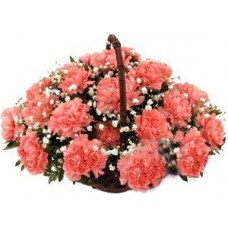 Basket Arrangements of Pink Carnations