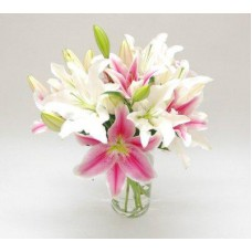 Vase Arrangements of White and Pink Lilies